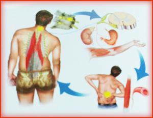 NST squilibrio del corpo