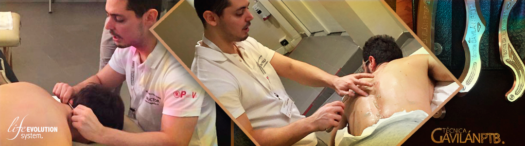 FDM - Life Evolution System